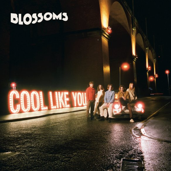 14 - Blossoms